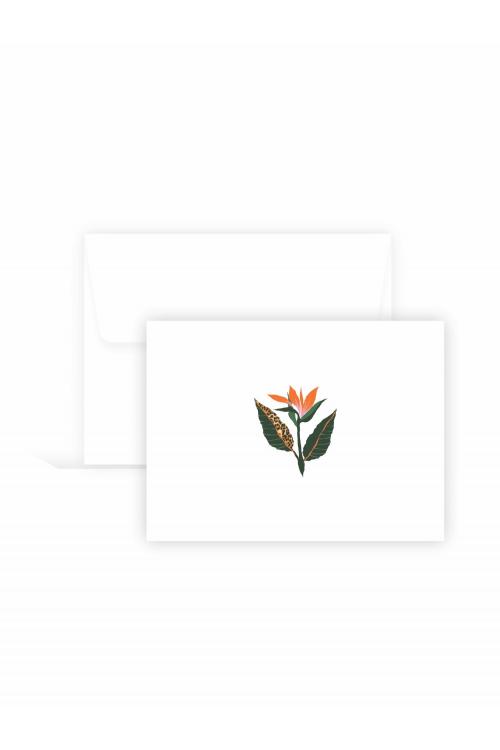 Cartão Campo | 10 unidades